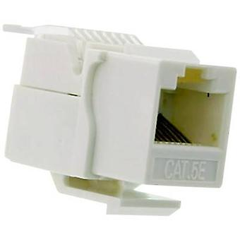 RJ socket, without the need for tools Socket, straight Number of pins: 8P8C White Telecom Security UKB/45U 1 pc(s)