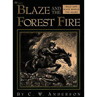 Billy and the Forest Fire by ANDERSON - 9780689716058 Book