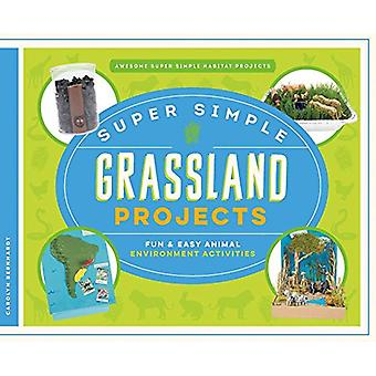 Super Simple Grassland Projects - Fun & Easy Animal Environment Activi