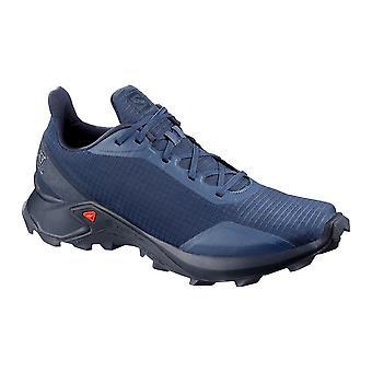 Salomon Alphacross 407982 runing året män skor