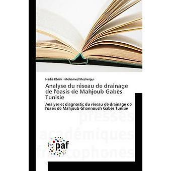 Analyse du rseau de drainage de loasis de Mahjoub Gabs Tunisie by Rbahi Nadia