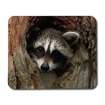 Raccoon Mouse Mat