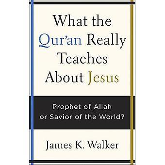 Ciò che il Corano insegna veramente su Gesù - Profeta di Allah o Salvatore