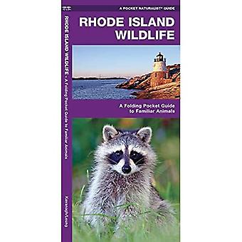 Rhode Island Wildlife: An Introduction to Familiar Species (Pocket Naturalist Guides)