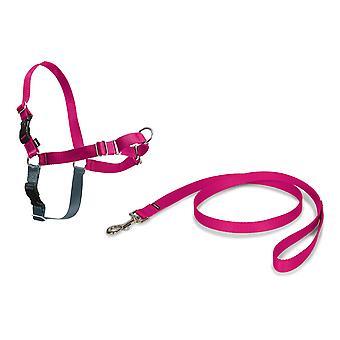 , Easy Walk Harness, Közepes, Rózsaszín, 1,8 méteres ólom, Nincs pull, képzés, állítható, a kis / közepes