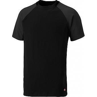 DICKIES Mens deux tons à manches courtes Raglan Crew Neck T-Shirt