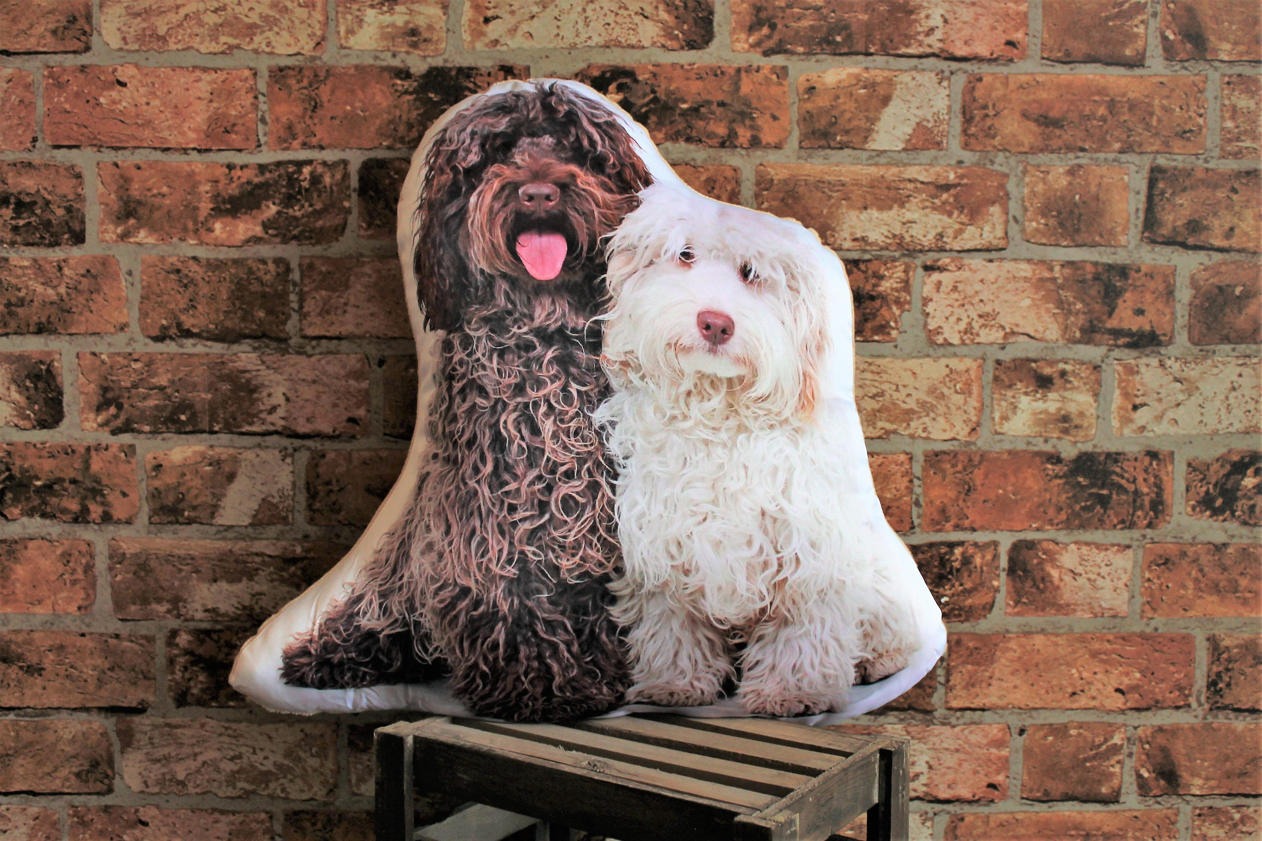 Adorable labradoodle shaped cushion
