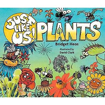 Just Like Us! Plants by Bridget Heos - 9780544570948 Book