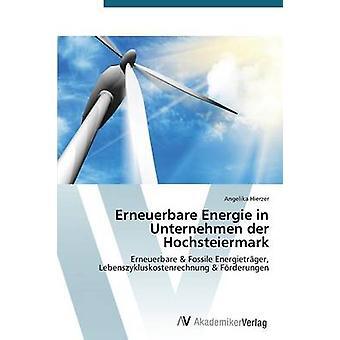 Erneuerbare Energie i Unternehmen der Hochsteiermark av Hierzer Angelika