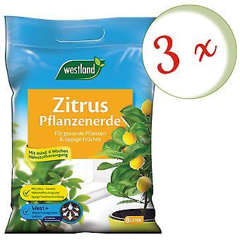 Sparset: 3 x WESTLAND® citrus plants Earth, 8 liters