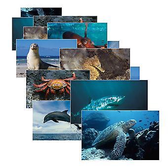 Sea Life Poster Set, Set Of 14