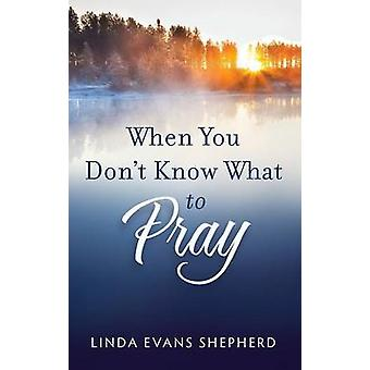 When You Dont Know What to Pray by Linda Evans Shepherd