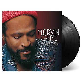 Marvin Gaye - Vinile raccolto