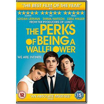 The Perks of Being a Wallflower DVD (2013) Emma Watson Chbosky (DIR) cert 12 Region 2