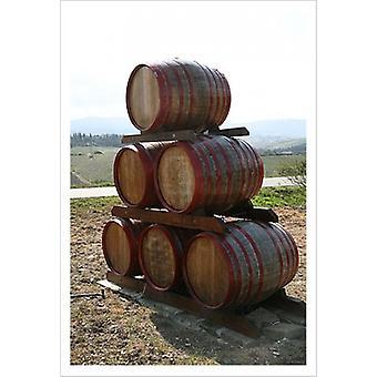 Weinfässer Tuscany Poster Print von Igor Maloratsky (13 x 19)