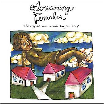 Screaming Females - What If Someone Is Watching Their TV? [CD] USA import