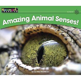 Verbazingwekkende dieren zintuigen! Geëgaliseerd tekst (Rising lezers)
