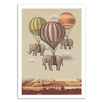 Art-Poster - Flight of the elephants - Terry Fan 50 x 70 cm