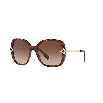 Bvlgari BV8217B 504/13 Dark Havana/Brown Gradient Sunglasses