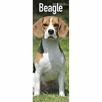 Otter House 2021 Slim Calendar-beagle