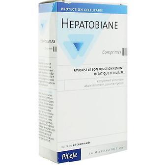 Pileje Hepatobiane 30 comprimidos favorece el buen funcionamiento hepático y biliar