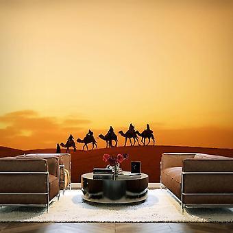 Tapet - Campingvogn i Sahara-ørkenen
