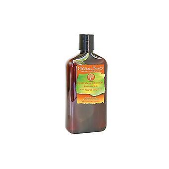 Bio-Groom Natural Scents Desert Agave Blossom Shampoo 428ml