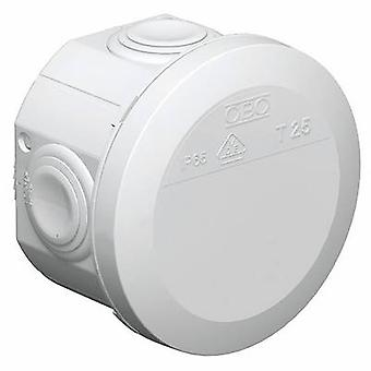 OBO Bettermann 2007029K Junction box (Ø x H) 80 mm x 51 mm Grey-white (RAL 7035) IP65 1 pc(s)