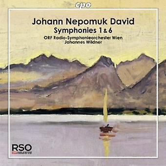 David/Orf Radio-Symphonieorchester Wien - importation USA Symphonies 1 & 6 [CD]