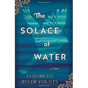 Il conforto dell'acqua: un romanzo