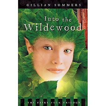 Into the Wildewood (Faire Folk Trilogy)