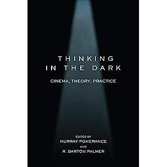 Thinking in the Dark: Cinema, Theory, Practice