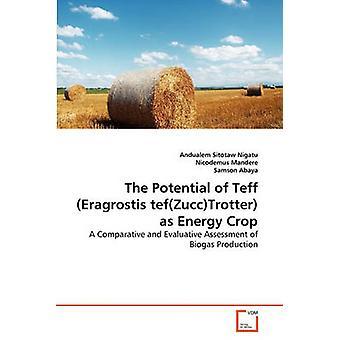The Potential of Teff Eragrostis tefZuccTrotter as Energy Crop by Nigatu & Andualem Sitotaw