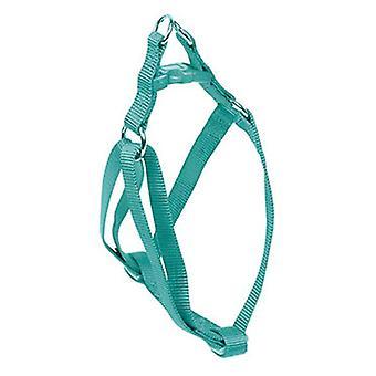 Nayeco koira valjaat koko L perus Aquamarine