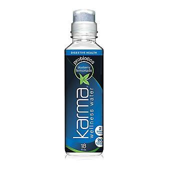 Karma Vatten Blåbär Lemonad-( 532 Ml X 12 flaskor)