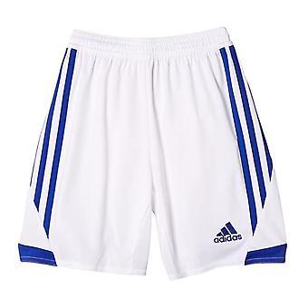 Adidas Junior Tiro Shorts