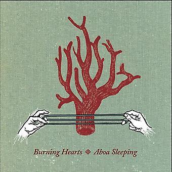 Aboa Sleeping [CD] USA import