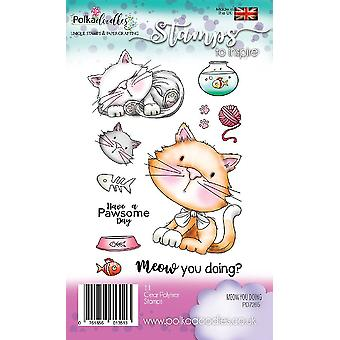 Polkadoodles Meow You Doing Clear Stamps