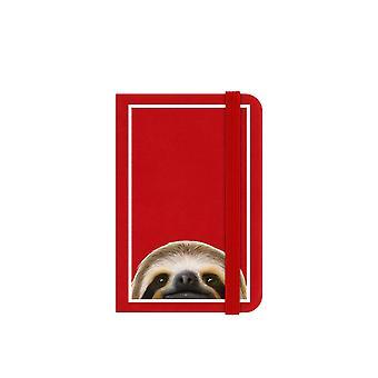 Inquisitive Creatures Sloth Notebook