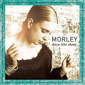 Morley - Days Like This [CD] USA import
