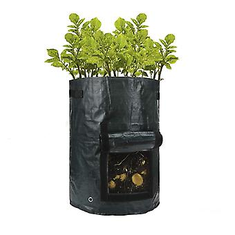 Cultivation bag-grow organically on the balcony