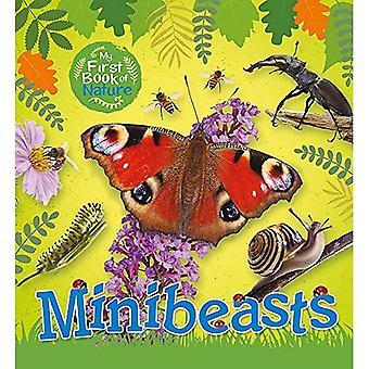 Min första bok av naturen: Minibeasts (min första bok av naturen)