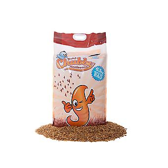 6.3kg dried chubby mealworms