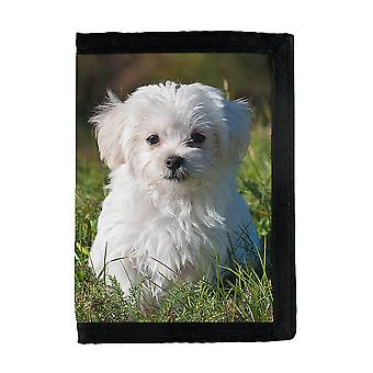 Malteser Puppy Wallet