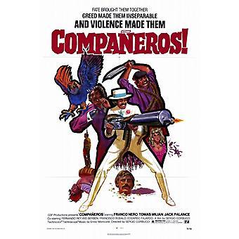 Companeros 映画ポスター印刷 (27 × 40)