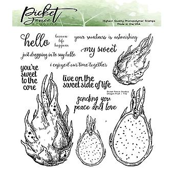 Picket Fence Studios Dragon Fruit Clear Stamps