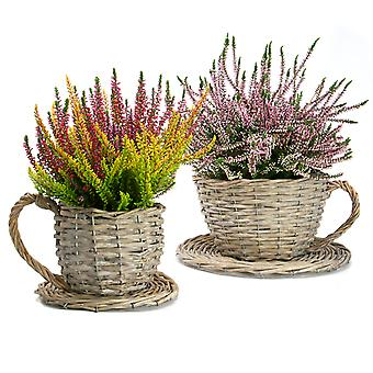Set of 2 Willow Teacup and Saucer Planters for Indoor and Outdoor Planting | M&W