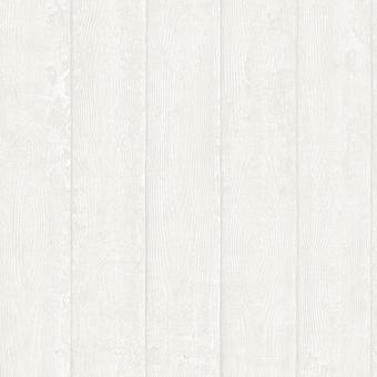 Rasch Portfolio Wallpaper 220827