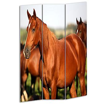 "1"" x 48"" x 72"" Multi Color Wood Canvas Horse  Screen"