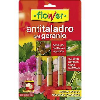 Flor Anti perfuração de gerânio monodose (Jardim, Inseto e parasita)